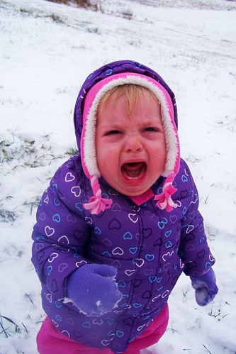 Phoebe hating the snow.