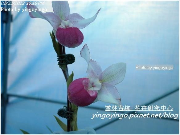 雲林古坑_花卉研究中心20120123_R0050678