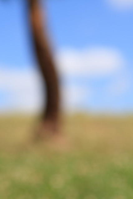 IMAGE: http://farm8.staticflickr.com/7018/6769744143_f2becf57a2_z.jpg
