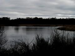 Ruta Lagoa de Cospeito