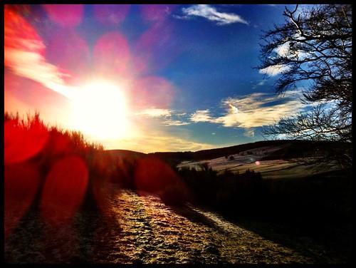 winter countryside shoot aberdeenshire outdoor january scottish shotgun syndicate iphone