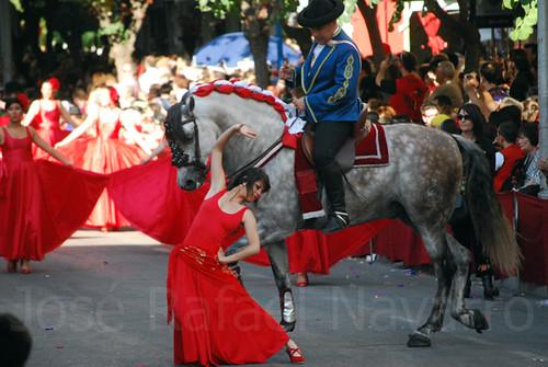 Dances with Horses / Bailando con Caballos