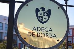Adega de Borba: visita e prova vertical