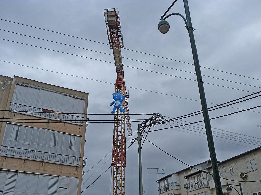 30-01-2012-crane-bear2
