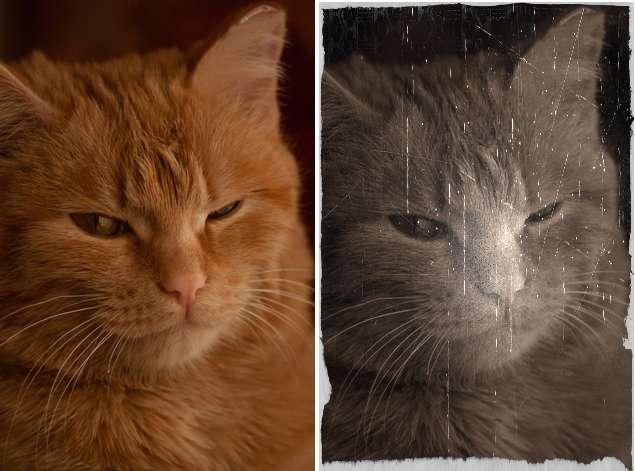 Оригинальное фото (слева) и обработанное (справа)