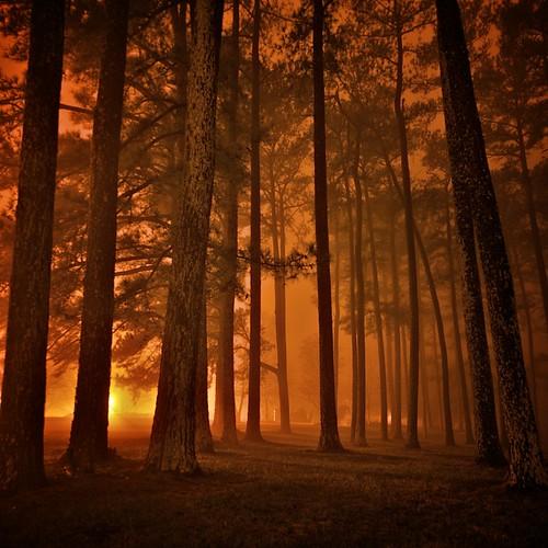 longexposure art fog night landscape alabama athens nightphoto allrightsreserved fogandrain napg fogography leemccain nophotocanbeusedwithoutmywrittenpermission canebrakeclub