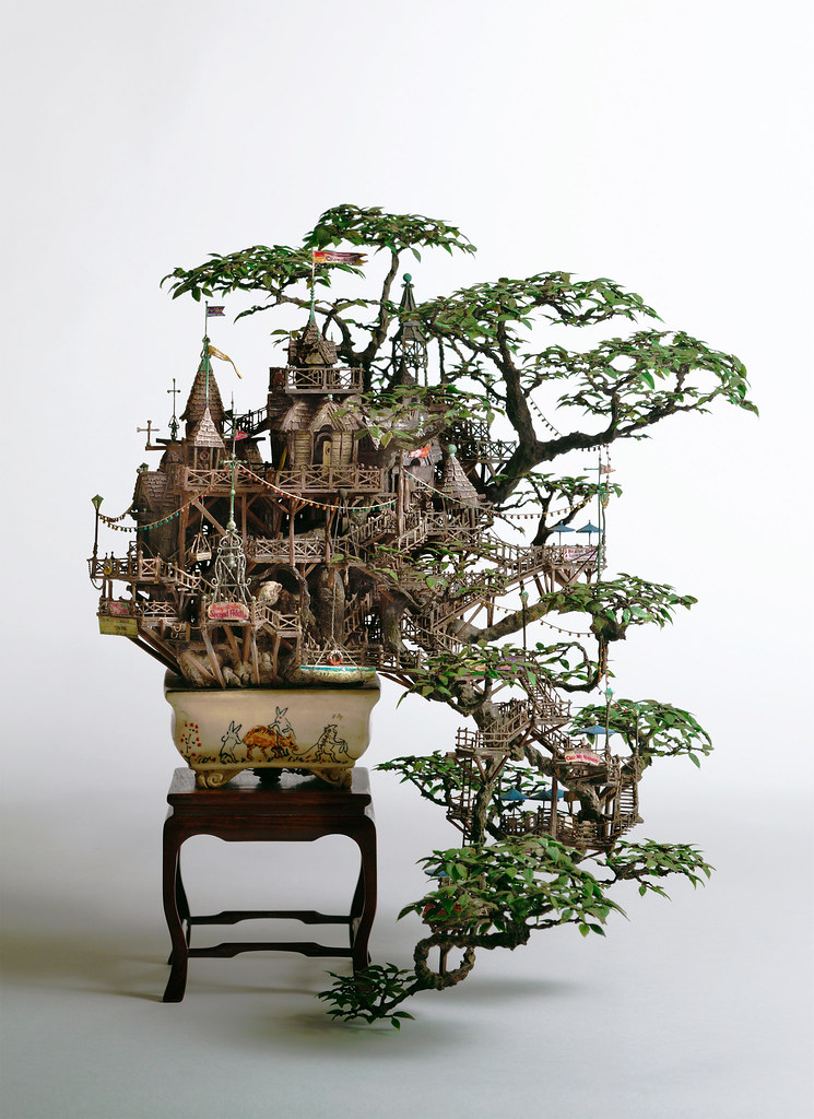 6844475327 69b59cce01 b Bonsai Versions of the Worlds Tallest Tree