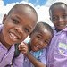 FMSC Distribution Partner - Haiti