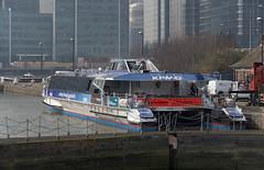 IMGP3531