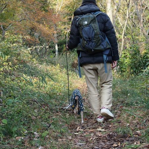 マ牧のハイキングコース(歩く様)