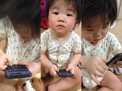 新しいおもちゃ「電卓」で遊ぶ(2011/11/26)
