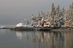 Winter Point