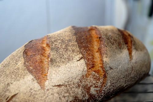 2º Pan: Pan Alargado-2