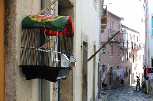 Lisboa 35