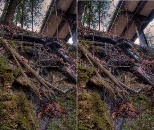 park plants ny stereoscopic stereophotography 3d crosseye upstate saratogasprings upstateny handheld chacha depth hdr spac 3dimensional crossview crosseyedstereo 3dphotography saratogaspringsny 3dstereo