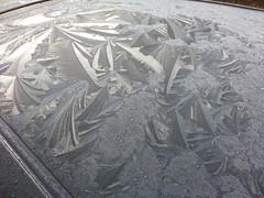 Zo zagen de auto's er uit vanochtend in Apeldoorn