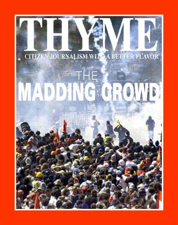 thyme0349A