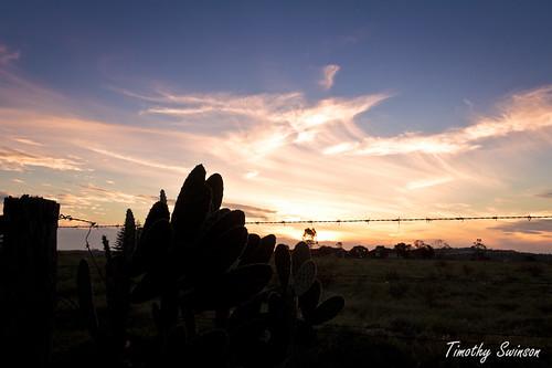 Sunset 18/12/11