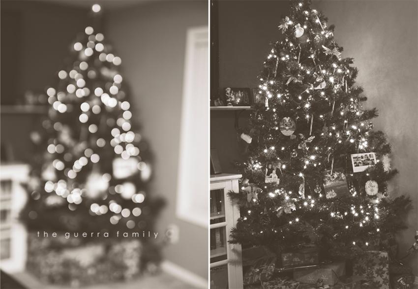 christmastree2011-2