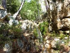 Confluence Velacu/ruisseau de Paliri  : branche du ruisseau de Paliri sur la D
