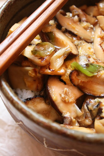 chinese eggplant donburi