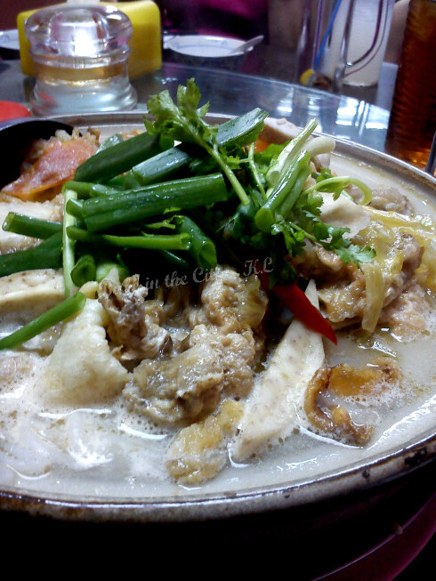 Claypot XO Fish Head Noodles