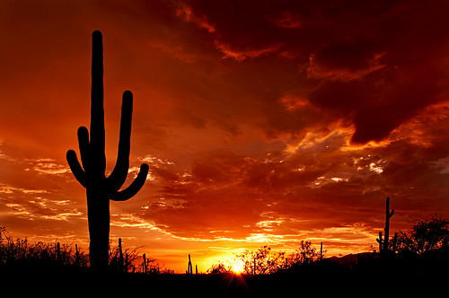 Group Solar Rebates in Arizona