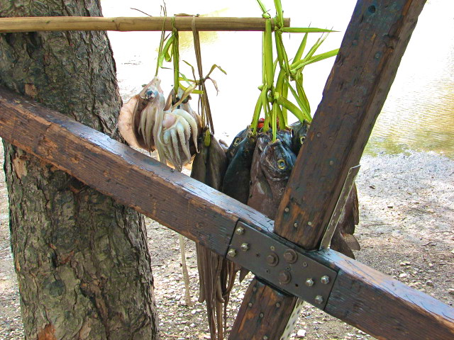 Timor L'este (East Timor) Image10