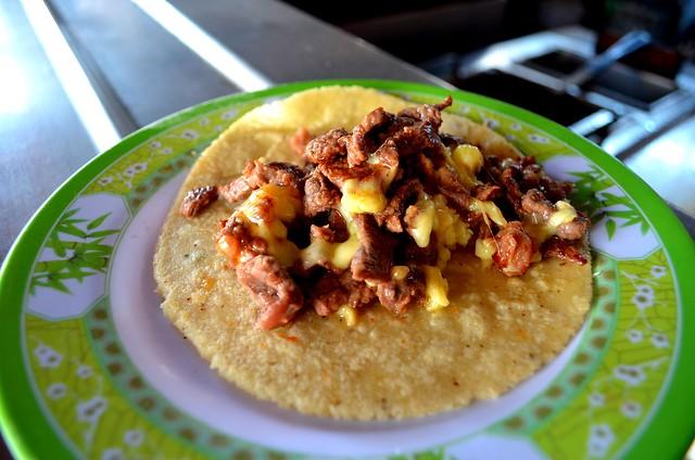 Taco with carne asada in Puerto Vallarta