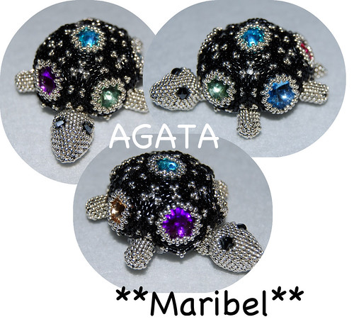Tortuga Agata by HADA-Maribel