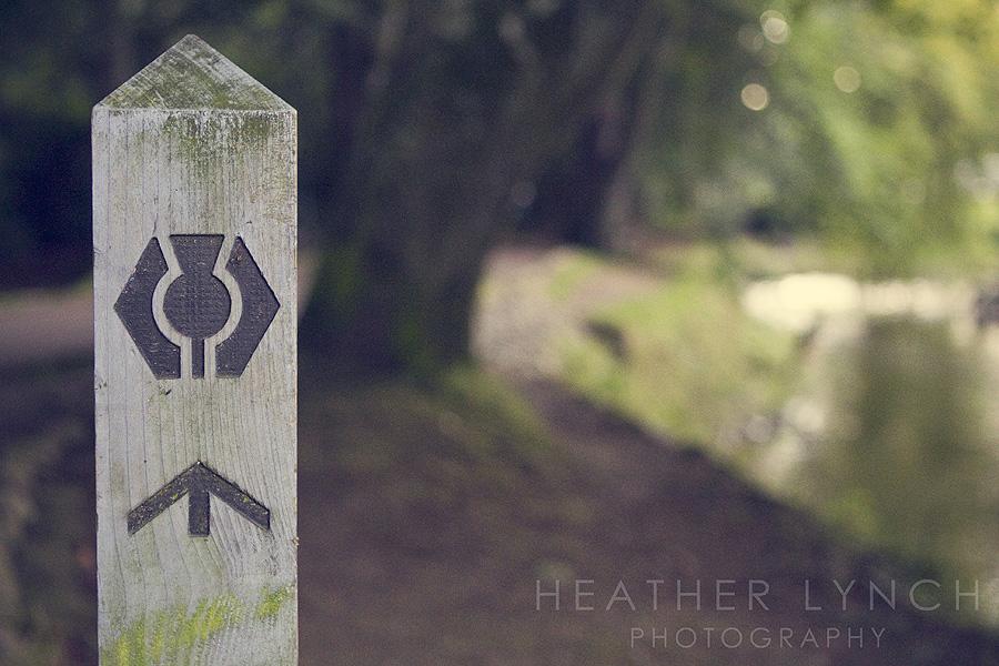 HeatherLynchPhotography_SCO10