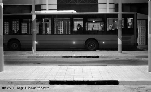 10/365+1 El lector by Ángel L. Duarte