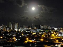 Projeto 365-2012