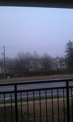 Gray rainy day in North Carolina