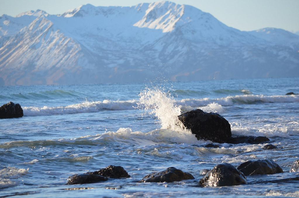 Fossil Beach tide