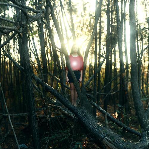 無料写真素材, 人物, 女性, 人物  森林, 人物  樹木, 人物  目を閉じる