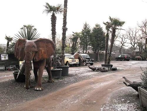 Tin elephant