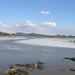 2006-03-29 Landscape 1
