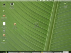 I like my desktop