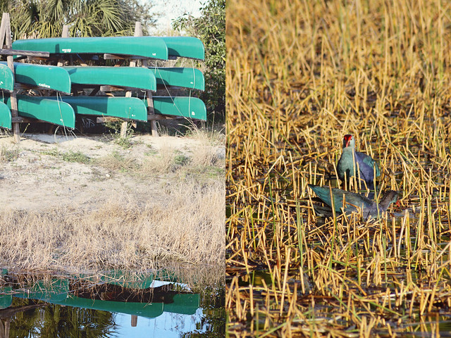 Chapel Trail preserve 2 diptych