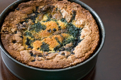 Blueberry Cornmeal Cake 2