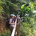 Looking for parrots at Millet Nature Reserve, St Lucia