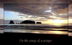 On the wings of a prayer