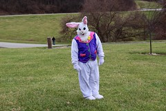 Dressed as Easter Bunny