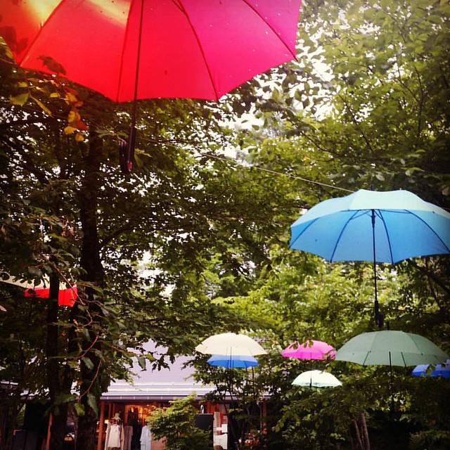 Rainy season comes again. #forest #ハルニレテラス  #中軽井沢