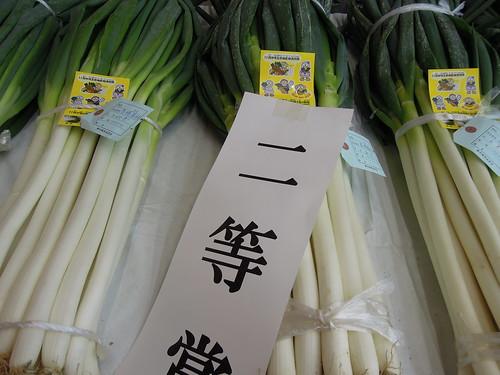 蕨市園芸品評会 二等賞
