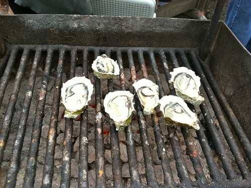Hog Island Oysters = BBQ'ing on a lazy sunday in Nov. 2011