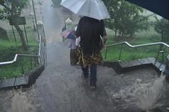 Marxem quan comença el diluvi