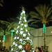 Small photo of Christmas in Burbank