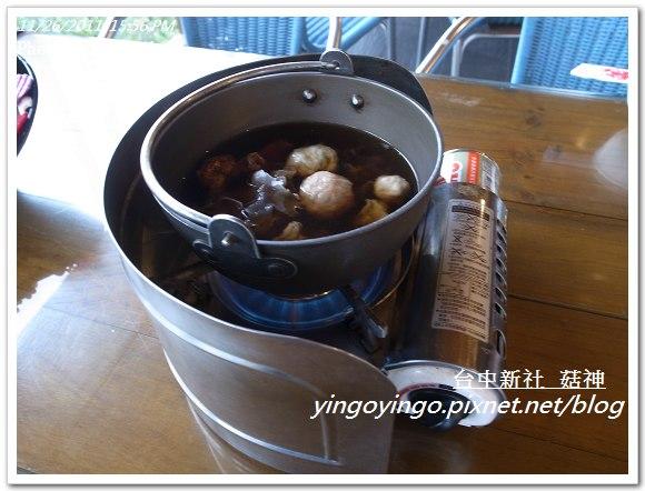 台中新社_菇神20111126_R0044213